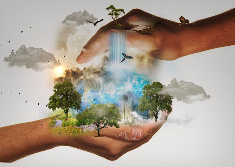 Transizione necessaria: insieme per il bene comune globale