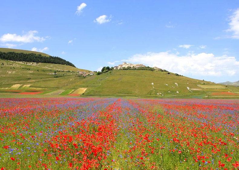 A Castelluccio, meraviglioso spettacolo della natura