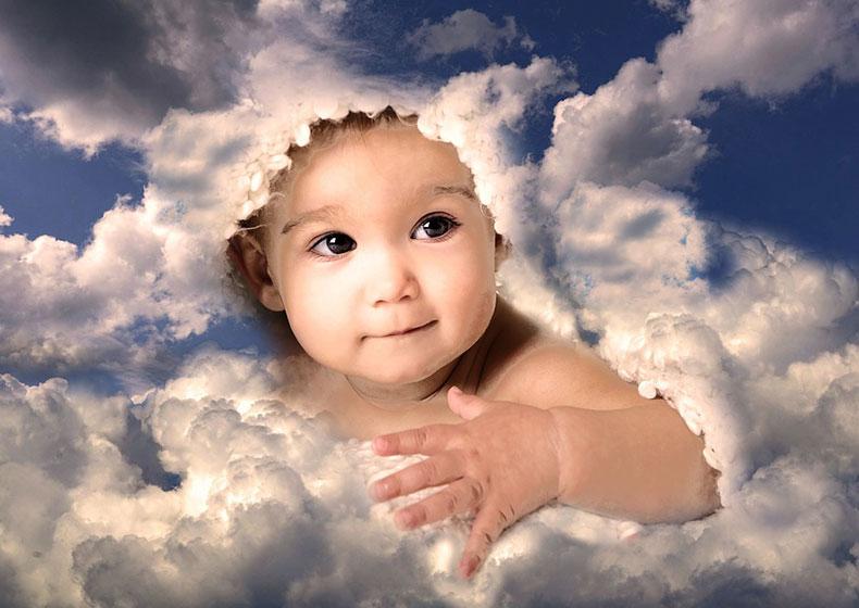Giornata per la Vita, germoglio di speranza